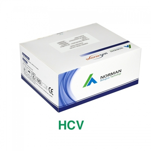 Hepatitis C Virus